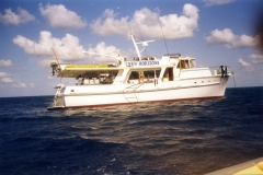 Swaines Trip 1999 01