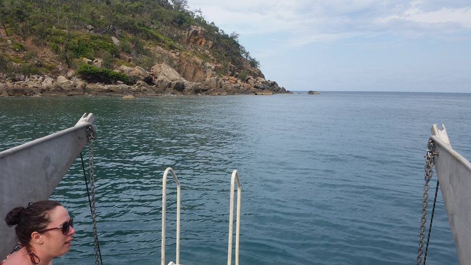 Bramble Reef and Pelorus Day Trip 5