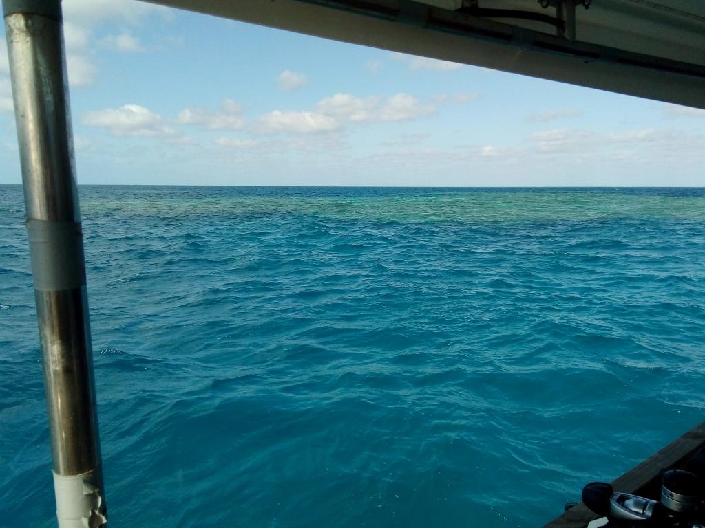 Dan's Harbour Stanley Reef