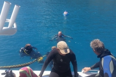 10th Sep 2018 Whitsunday Dive Academy 12