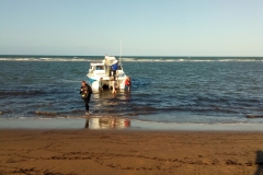 Back on the Beach 2