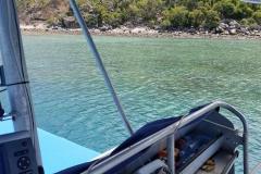 Bramble Reef and Pelorus Day Trip 1