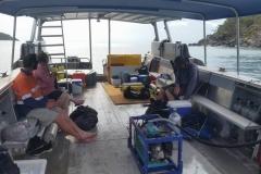 Bramble Reef and Pelorus Day Trip 3