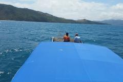 Bramble Reef and Pelorus Day Trip 4