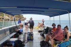 Bramble Reef and Pelorus Day Trip 7