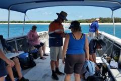Bramble Reef and Pelorus Day Trip 8