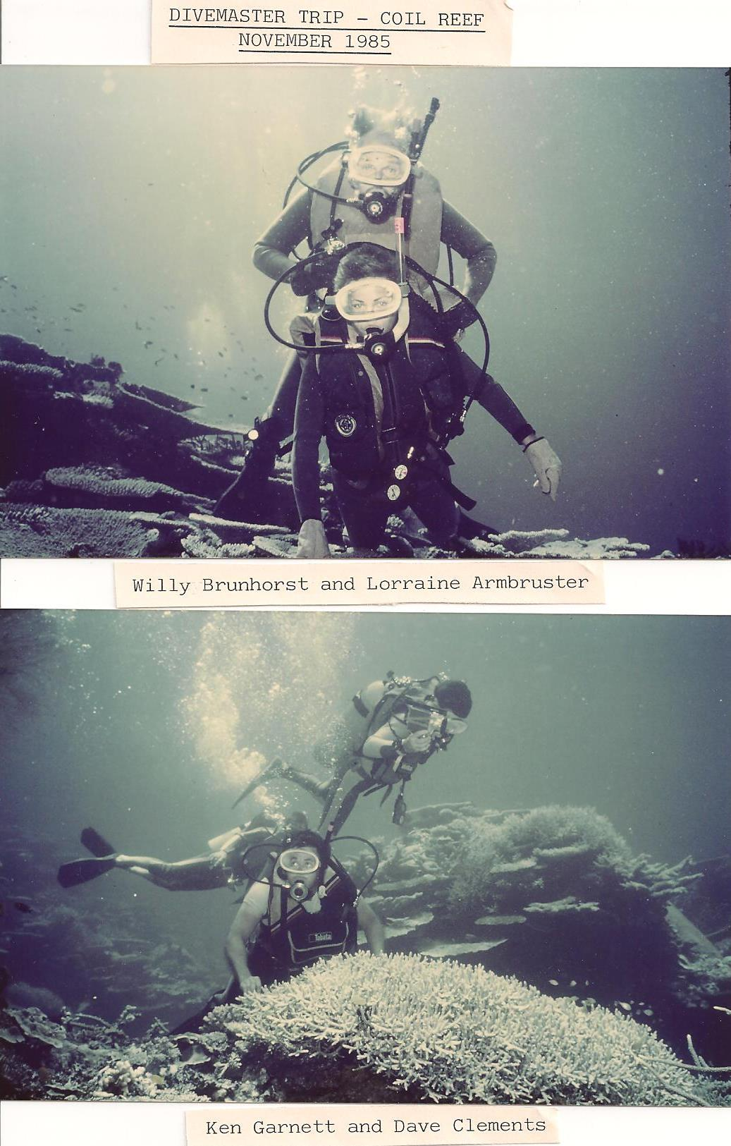 1985_CoilReef