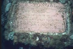 YONGALA 17toilet (29)